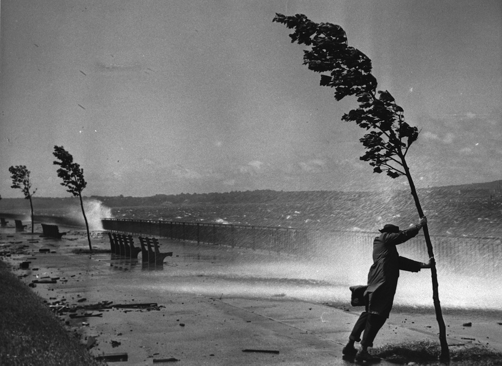 A man holds onto a tree by the seashore (possibly along the Shore Parkway Greenway) against severe winds during Hurricane Carol's assault on the Northeastern seaboard, Brooklyn, New York, August 31, 1954. (Photo by Hulton Archive/Getty Images)